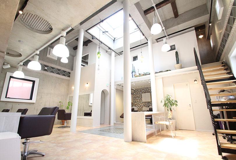 天井高5m超の天窓からは自然光が優しく差し込みます
